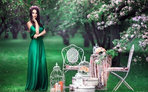 Picture greens, look, chairs, angel, cell, dress, brunette, wreath, vintage