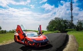 Picture road, the sky, clouds, trees, orange, lawn, lamborghini, front view, orange, Lamborghini, aventador, DMC aventador, ...