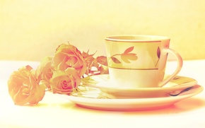 Picture color, flowers, roses, treatment, Cup, still life, saucer, image, set
