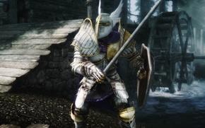 Picture Hero, Warrior, Skyrim, The Elder Scrolls V: Skyrim, Bethesda Softworks, Video Game, by Hothtrooper44, Paladin …