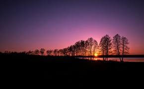 Picture silhouette, sanset