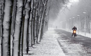 Picture winter, the city, street