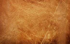Picture leather, texture, leather, skin