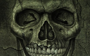 Picture texture, cracked, skull