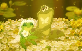 Wallpaper flowers, wedding, the bride, butterfly, frogs, the groom, veil
