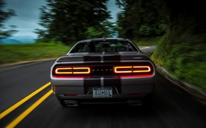 Picture Road, Trees, Strip, View, Optics, Dodge, Challenger, 392, Road, 2015, Srt