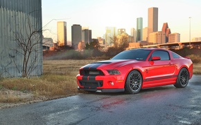 Picture mustang, red, ford, shelby, cobra, gt500