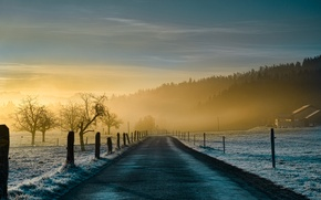Picture road, nature, fog, blue, morning