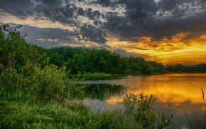 Picture greens, forest, the sky, trees, sunset, clouds, lake, the evening, glow, the bushes