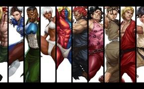 Picture Elena, Alex, Akuma, Ken Masters, Ibuki, Chun-Li, capcom, Gill, Hugo, Dudley, Makoto, Street Fighter III: …