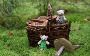 Picture forest, basket, toys, mushrooms, bears