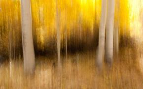 Picture autumn, nature, background
