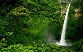 Wallpaper Guatemala, waterfall, trees, the bushes, rock, greens, forest, open
