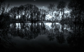 Picture water, trees, night, photo, landscapes