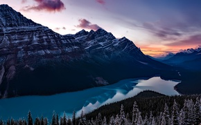 Picture forest, snow, sunset, mountains, lake, the evening, Canada, Banff National Park, Banff, Peyto, Peyto Lake