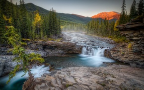 Picture forest, mountains, river, waterfall, Canada, Albert, Alberta, Canada, Kananaskis Country, river Spike, Sheep River Falls, …