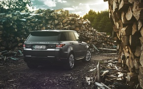 Picture Land Rover, Range Rover, Car, Nature, Wood, 4x4, Sport, Diesel, Luxury, Forrest, English, Rear