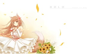 Picture smile, bouquet, petals, tail, white dress, ears, Spice and wolf, red thread, Holo, Spice and …