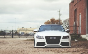 Picture Audi, white, front, low, stance