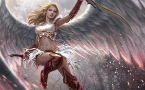 Picture light, flight, Girl, wings, sparks, swords, pointy ears