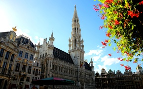Picture flowers, tree, tower, Belgium, Brussels, town hall, La Grand-place