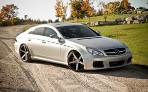 Wallpaper Mercedes-Benz, Auto, CLS, Trees, Tuning, Stones, Machine