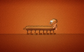 Wallpaper minimalism, shoes, scarf, glasses, insect, centipede, vladstudio, orange background, laces