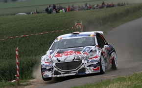 Picture Dust, Peugeot, Rally, 208, T16, ERC