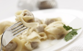 Picture macro, plate, meat, plug, the dough, dumplings