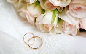 Picture flowers, roses, flowers, engagement rings, roses, wedding rings