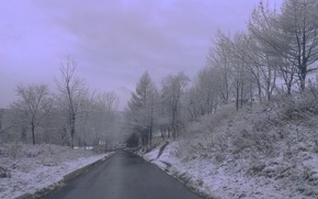 Picture road, snow, nature, the city