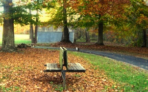 Picture leaves, trees, Park, Autumn, track, falling leaves, benches, trees, nature, park, autumn, leaves, path, fall
