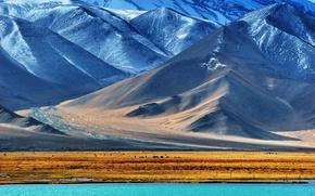 Picture snow, mountains, lake, Pamir