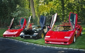 Picture Lamborghini, door, trio, open, Countachs