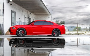Wallpaper the sky, clouds, reflection, puddle, red, Dodge, dodge, charger, srt8, Miami, reflection, the charger, срт8, ...