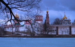 Picture winter, branches, river, tree, Moscow, Russia, the monastery, The Moscow river, Novodevichy convent