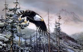 Wallpaper spruce, mountains, winter, painting, Heaven & Earth, birds, bald eagle, Christopher B. Walden, bald eagle, ...
