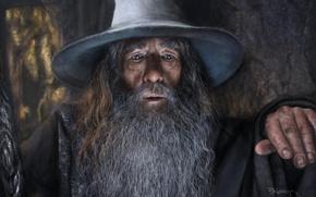 Picture Gandalf, portrait, The Hobbitt