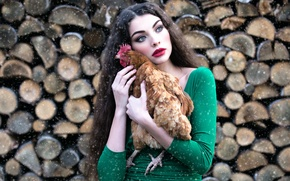 Picture girl, snow, chicken, makeup, wood, Inese Stoner, Alyona