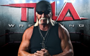 Picture pose, glasses, Hulk Hogan, the ring, actor, muscle, wrestler, biceps, showman, Terry Gene Bollea, Hulk …