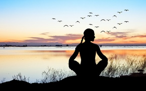 Picture relax, sunset, pose, yoga