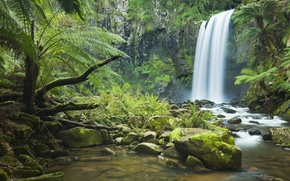 Wallpaper forest, trees, rock, river, stones, waterfall