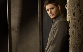 Wallpaper Actor, Supernatural, Jensen Ackles, Supernatural, Jensen Ackles, Producer, Director