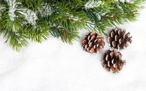 Picture snow, needles, tree, spruce, branch, New Year, Christmas, Christmas, bumps, New Year