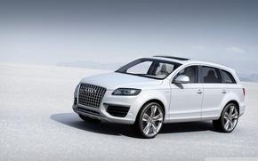 Picture Audi, plain, white