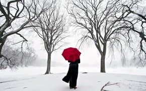 Picture girl, snow, Japan, umbrella, Sakura