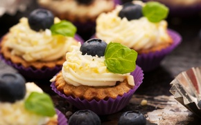 Picture the sweetness, cake, cream, cupcake, cream, blueberries, berries of a bilberry, sweetness