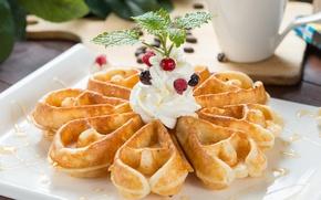 Picture berries, cream, dessert, waffles