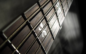 Picture macro, strings, Guitar, Frets, Grif