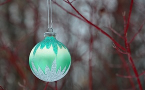 Picture new year, Christmas, branch, ball, decoration